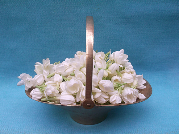 Flower Basket with Jasmine Flowers.