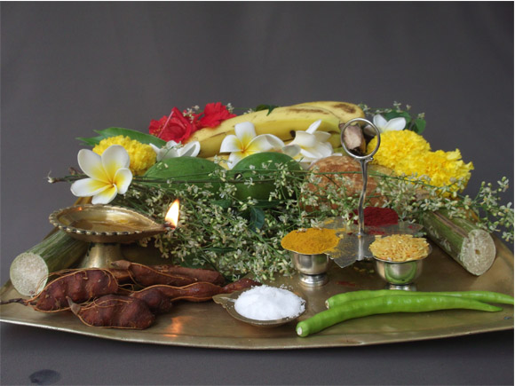 Various ingredients of the Ugadi pachhadi