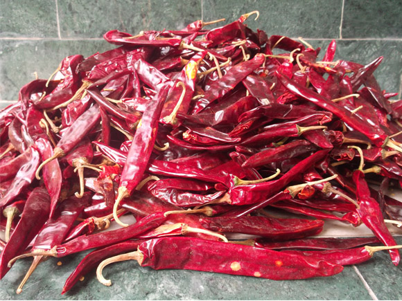 Special Red chillies for aavakaya